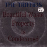 The Triffids - Beautiful Waste / Property Is Condemned